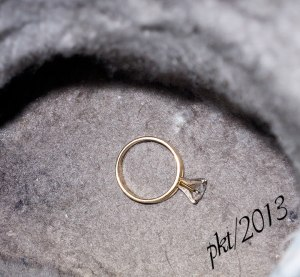 IMG_5949-web-ring