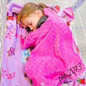 IMG_6750web-Jade-asleep-in-cart