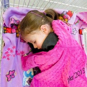 IMG_6752web-Jade-asleep-in-cart