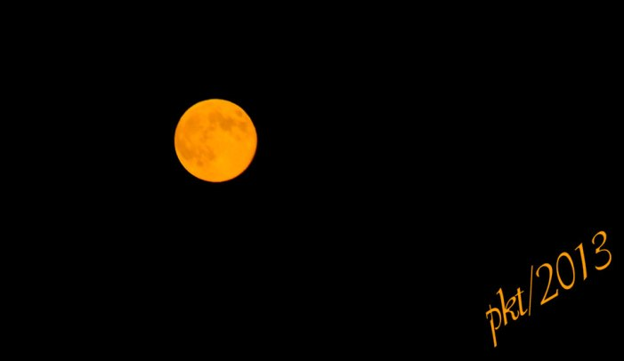 DSC_9401yellow-gold-full-moon