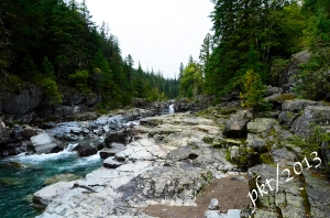 A beautiful rushing stream with clear blue water inside Glacier National Park