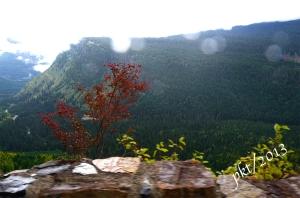_DSC6827 drive up mountain leaves clouds rain