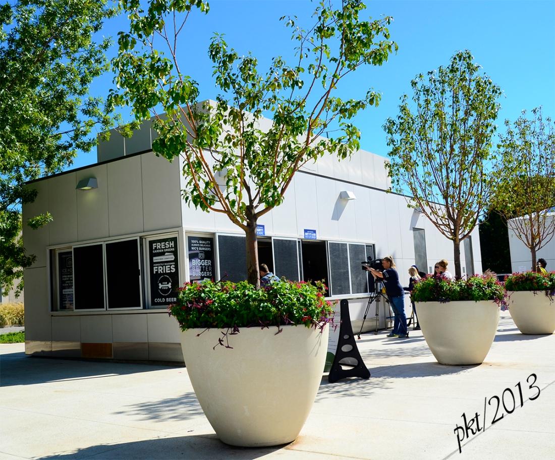 _DSC4865nics building