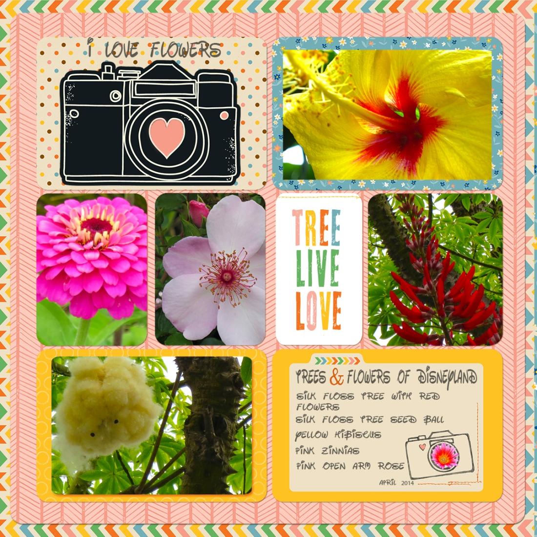 webDisney flowersSan Diego-ProjectLifeTemplate2013