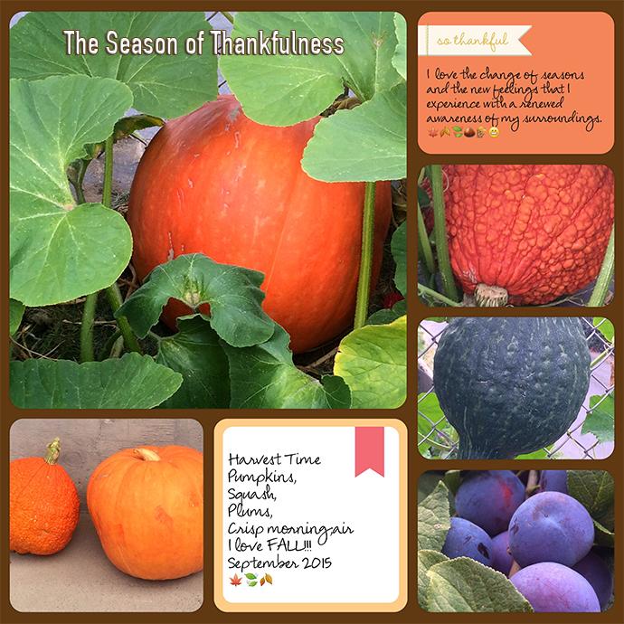 web pumpkins a 12 project-life