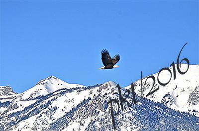 web eagle mountains sig_DSC8451