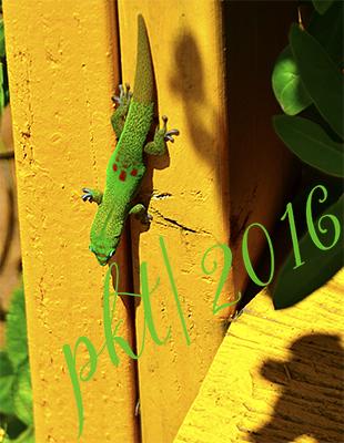 web gecko brown tail sig_DSC8760