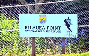 web Kilauea Point lighthouse sig_DSC3635