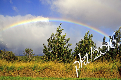 web rainbow Oahu county sig_DSC9262