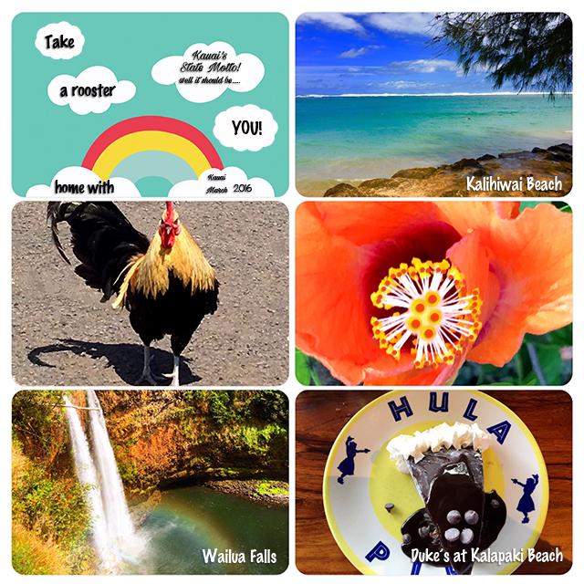 web rainbow project-life Kauai March