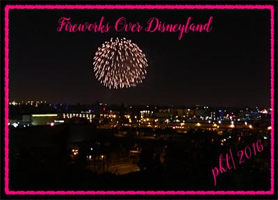 web Fireworks over Disneyland large sig IMG_0320