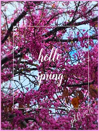 web hello spring blossoms sigIMG_3914