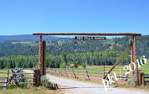 web Red Hills Ranch_DSC4118