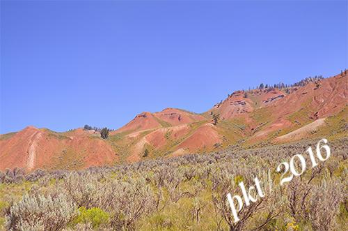 web red hills sage branch_DSC4020