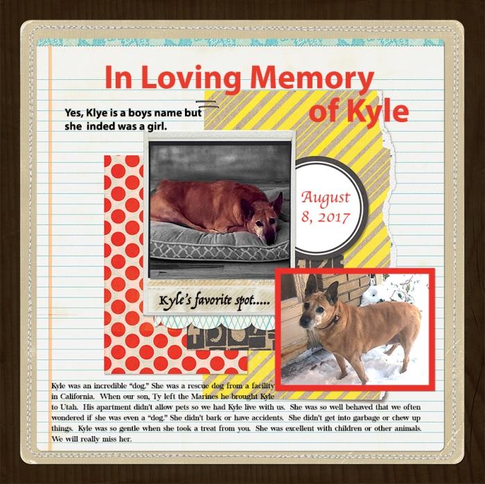 web Kyle JS-DPL17-00
