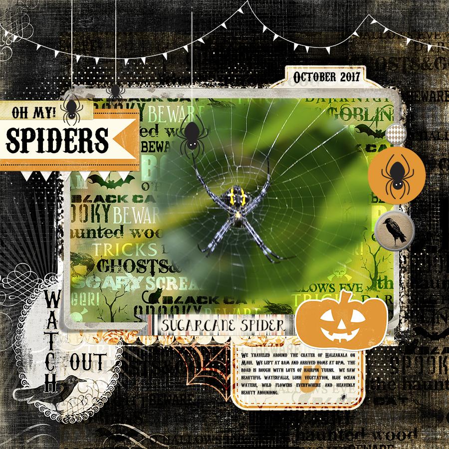 web Spider layoutJS-PSF-September29-PatternPaperOverlay