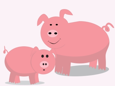 cute-pig-illustration_z1R_IGFO_L
